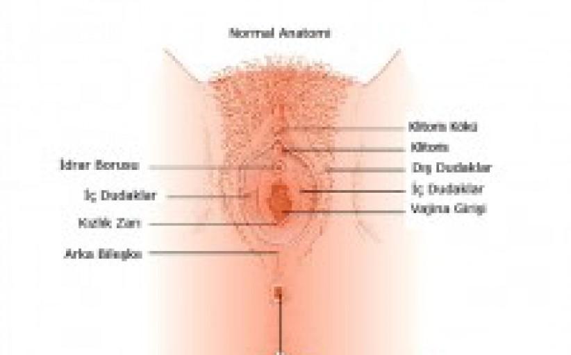 Vajinanın Bozuklukları, Deformasyonu ve Düzeltme Operasyonları(Vajina Plastiği)